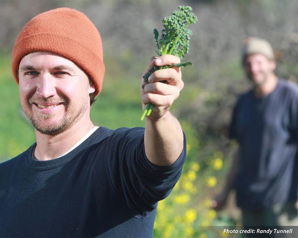 organic farmers in the field
