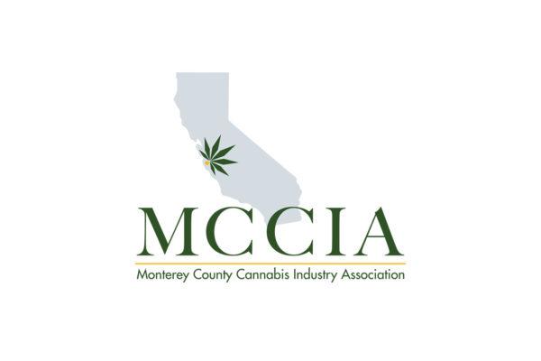 MCCIA logo