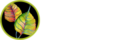 Forest Design LLC Logo