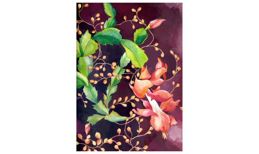 Watercolor painting of Christmas cactus